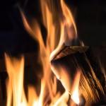 身内の擁護と言うのはほぼ火に油を注ぐ結果にしかならない