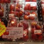マンゴーやミニマンゴー(くずマンゴー)は沖縄のアンテナショップ「銀座わしたショップ」へ