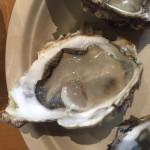 広島のアンテナショップTAUでオイスターバーが期間限定でやってます。牡蠣「先端」と日本酒「誠鏡」の組み合わせは素晴らしい!