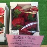くろいちごの値段は600円くらいから。千葉に来たら道の駅をのぞいてみると良いかも。